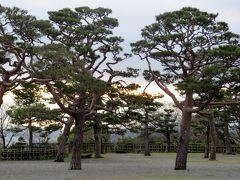2015春、四国周遊の旅(6):3月29日(6):高知、高知城、城内の桜、天守、本丸、二の丸