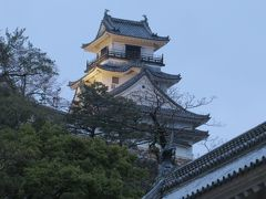 2015春、四国周遊の旅(7):3月29日(7):高知、高知城、高知城の桜、天守閣、雪洞、花見の宴