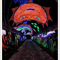 Solitary Journey [1561] とことこトレインに乗って…光る蛍光石で装飾された幻想的な世界へ♪'きらら夢トンネル'<錦川鉄道>山口県錦町
