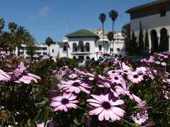 日出る国から日沈む国へ モロッカンな日々 砂漠のホテルに泊まるモロッコ8日間周遊の旅♪ カサブランカからマラケシュへ