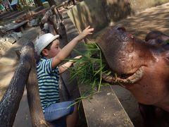 父ちゃんと息子の男旅 ④ - 2 チェンマイ動物園