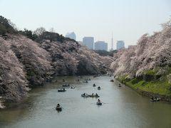2015年春 桜満開(九段下、王子、その他)