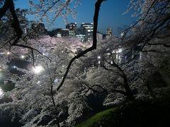 2015年春 夜桜満開(九段下、王子)
