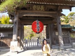 NACKさん、初・日本見聞遊食の旅 9 鎌倉・長谷寺を参拝する。
