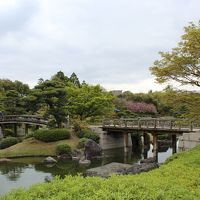 大仙公園・日本庭園をブラブラして来ました。