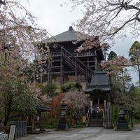 名残桜と新緑の笠森観音