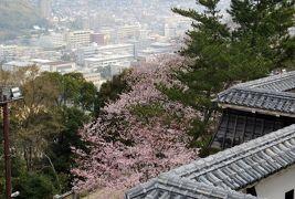 2015春、四国周遊の旅(20):3月31日(4):愛媛、松山城、連立式天守、武具類展示品、書、絵画
