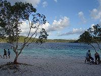 フレイザー島の魅力