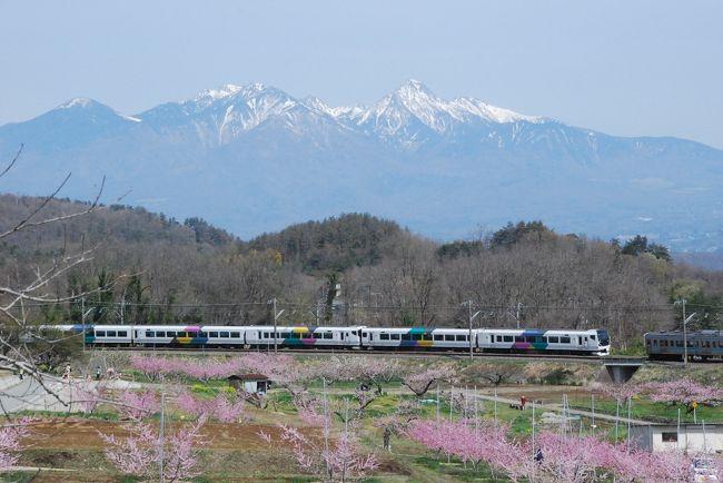 桃の花が一面に咲き誇る新府(しんぷ)桃源郷にて、鉄道写真を撮ります。<br /><br />桃源郷の中を走る中央本線では、いろいろな形の電車とイベント電車に会えます。<br /><br />桃源郷の山と花を中心にした花旅は前の旅行記で紹介しています。<br />こちらもご覧ください。