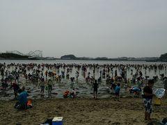 横浜海の公園 潮干狩り情報 2015年4月18日(土)