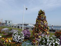春の優雅な横浜旅行♪ Vol3(第2日目) ☆山下公園のよこはま花と緑とスプリングフェア「花壇展」・ホテルニューグランド「ザ・カフェ」で桜タイム♪