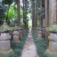 紅葉の名所・平林寺の新緑