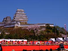 満開の桜と姫路城 下