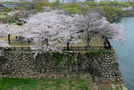 2015春、近畿・中国・四国の百名城巡り(4/38):4月3日(4):大阪城(4):残念石、桜花と日本庭園