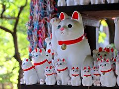 招き猫 と 将門/平将門は江戸の守護神だったのか【豪徳寺・今戸神社・将門の不思議を探る旅】