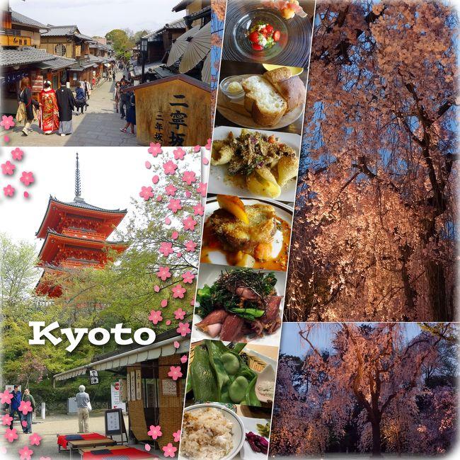 やっと時間かとれたので、春の京都に出かけました。<br />ソメイヨシノの満開時期からは少し時期がずれてしまいましたが、綺麗な桜、たくさんみられました。