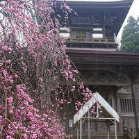 2015/04   秋田周遊 1/2