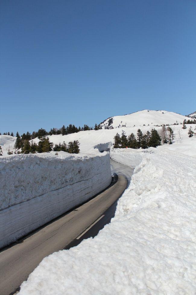 春=桜のイメージしかなかった私にとってはビックリな事の一つ。<br />長い冬の間、積雪で除雪が追い付かない八甲田の冬季通行禁止区間の道路の除雪が進み、通れる様になる事は<br />青森の春を告げる物の一つらしいです!<br />4月なのに雪景色ですが、とても綺麗でした^^