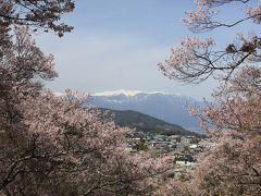 桜に魅かれて善光寺・高遠城と松本の旅(1日目)