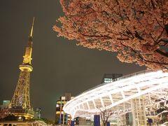 栄でおいしいビールを飲んで夜桜を楽しもう!