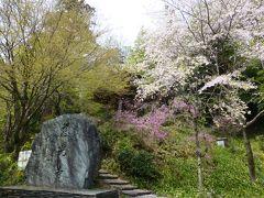 【坂東札所巡礼4-1】八重桜を見ながら御開帳の札所9番慈光寺へ
