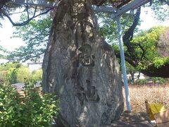 上野公園周辺(1)