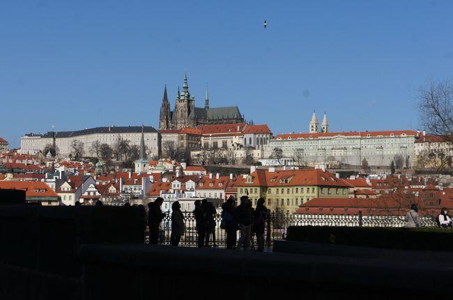 この旅行記は「人生初のヨーロッパはプラハに行って歴史を感じながらチェコビールをたらふく飲んできました【ダイジェスト】」の詳細編です。<br /><br />ダイジェストはこちら→ http://4travel.jp/travelogue/10991778<br /><br />人生初のヨーロッパはチェコ・プラハにやってきました。<br />歴史の町プラハ。今日の午前中はプラハ城を観光します。<br /><br /><br />【旅程】<br />初日 成田空港からウィーン経由でプラハへ http://4travel.jp/travelogue/11004728<br />   プラハの夜を散策   http://4travel.jp/travelogue/11004773<br /><br />2日目 プラハ城 ← 今ここらへん<br />   ユダヤ人地区<br /><br />3日目 バスでチェスキークルムロフ観光<br />4日目 旧市庁舎<br />5日目 移動日、フランクフルトでちょっとビール<br />6日目 帰着<br /><br />【宿泊】<br />ヒルトン・プラハ・オールドタウン