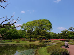 皇居 二の丸庭園 春 盛り つつじ咲く 中