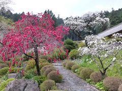 【坂東札所巡礼4-2】慈光寺参りの後は霊山院へ、うどんも食べられるかなあ!