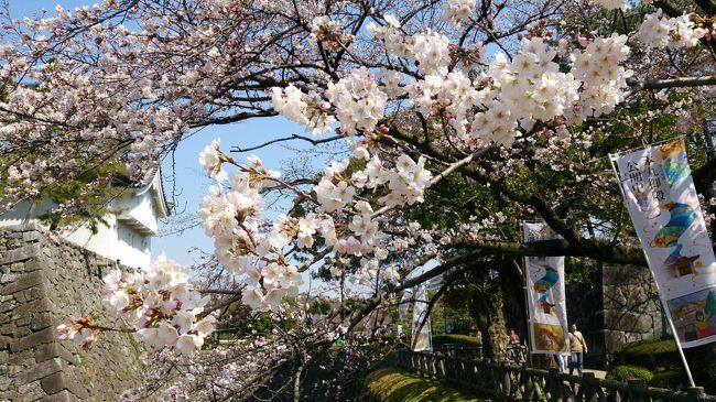 2013年11月、2014年1月に引き続き、3月にも降って湧いた日本出張。<br />今回は珍しい1か月という長期でご招待頂き、久々の日本ロングステイ。<br /><br />滞在先は日本ではあるけれど名古屋という初めての地ということでドキドキでした。<br />このドキドキ&amp;不安をやわらげてくださったrinnmamaさんには本当に感謝します。<br /><br />1か月も名古屋にいれるのだから今まで足を踏み入れたことのないこの地域を満喫しよう、<br />そう思ったのもつかの間、出発数日前に妊娠発覚という一大事に見舞われ。。。<br />出発前に病院に行きたくても予約が取れず、そのまま日本に来てしまいました。<br />そんなこんなでこの地域を満喫しようという計画はすべて水の泡。<br />暇さえあれば東京の実家へ新幹線で往復するという日々になってしまいました。<br />何はともあれ、大事な時期を日本で(偶然)過ごせたことはありがたいことです。<br /><br />名古屋でのお出かけの殆どはrinnmamaさんがガイドしてくださいました。<br />(もう時間が経ってしまって詳しい地名はあまり覚えていないのですが^^;)<br />あまり写真もありませんが、記録として残させていただきます。