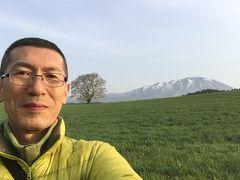 ♪15年05月02日 土曜日 小岩井農場の一本葉桜を見に行って来ました。