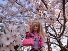 船橋しゃり膳でランチからの~海老川で花見~バービーと桜ともこ編