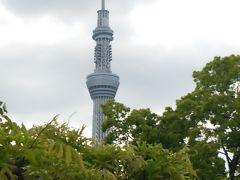「御朱印ガール」 その⑩ 東京十社を巡る