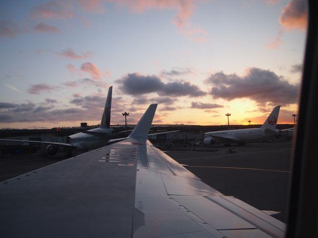 昨年から計画していたJGCステータス取得を目指して、<br />いよいよ修行を開始することにしました。<br />OKA-SINと呼ばれる定番のルートで飛行機を楽しみつつ<br />シンガポールも楽しみました。<br />初めてのシンガポールはとても楽しく多国籍文化に<br />溢れた良い旅になりました。<br /><br />−−−−−−−−−−−−−−−−−−−−−−−−−−−−−<br /><フライト><br />(4月29日)<br /> 8:25 JAL905 羽田→沖縄<br />  11:20 JAL904 沖縄→羽田<br />  18:10 JAL711 成田→シンガポール<br /><br />(5月2日)<br /> 1:50 JAL038 シンガポール→羽田<br />  11:35 JAL913 羽田→沖縄<br />  15:50 JAL914 沖縄→羽田<br /><br /><br /><ホテル><br /> Ambassador Transit Hotel <br /><br /><日程><br /> 4/30〜5/2<br />−−−−−−−−−−−−−−−−−−−−−−−−−−−−−<br />