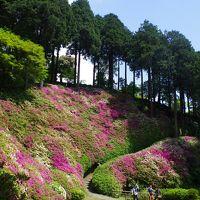 佐賀県基山町 大興善寺につつじを見に行く(2015年5月)