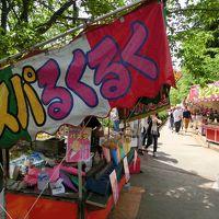 ☆甲府3大祭りの1つ~正ノ木稲荷祭り(しょうのきいなりまつり)と日本で4番目に古い動物園~甲府市遊亀公園付属動物園に行ってきました☆