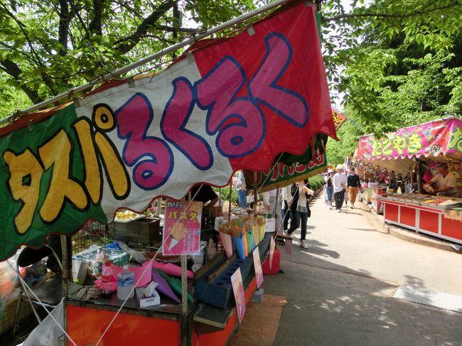 今年のGWは家に引きこもっていましたが、さすがにどこかに<br />出かけないともったいない!!とお祭りとお祭り会場内にある動物園に<br />行ってきました。<br /><br /><br />子供の頃、毎年行った「しょうのきさん」<br />正式名は「正ノ木稲荷祭り」と言うらしい。<br />山梨県甲府市太田町の稲積神社で農業の神のお祭りで江戸時代から続いているそうです。<br />毎年5月2日~5日まで4日間続くお祭りで甲府3大祭りの1つだそうです。<br /><br />甲府3大祭り・・・「正ノ木さん」、「大神さん」、「厄地蔵さん」<br /><br /><br />神社の隣にある昔からある動物園。「太田町動物園」と呼んでましたが<br />正式名は「甲府市遊亀公園付属動物園」と言うらしい。<br />日本で4番目に古いそうです。確かに古い動物園です。。。<br /><br /><br />我が家の休日の様子~~~よろしければご覧下さい~~