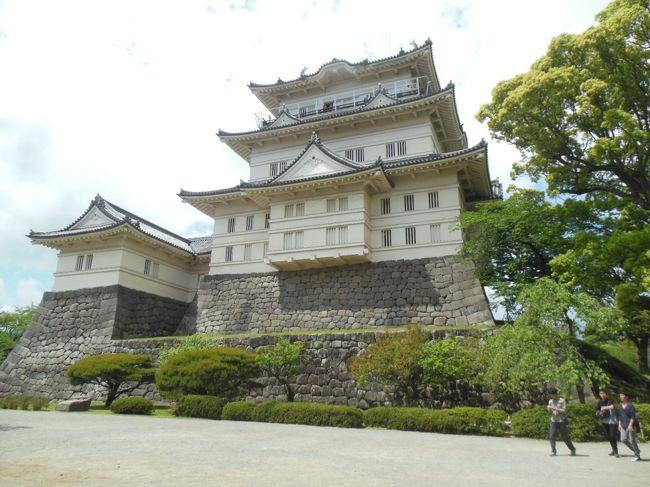 平成27年5月4日、小田原を訪れた。小田原城は戦国大名の北条氏が関東支配の拠点とて整備拡充した城である。特に、秀吉の攻撃に備えて築いた城下を囲む総延長9kmの総構により、その規模は大変大きなものとなった。北条氏の滅亡後、江戸時代に大久保氏や稲葉氏によって近代城郭としてその形が整えられた。しかし、元禄16年の地震によりほとんどの建物が倒壊・焼失した。その後、再建されたが明治3年に廃城となり、城内の多くの建物が解体された。現在見られる建物は、昭和9年に再建された隅櫓、昭和35年の天守閣、昭和46年の常盤木門、平成9年の銅門、そして平成21年に再建された馬出門などである。<br />小田原駅からまずは小田原城址公園に向かう。公園内では馬出門→銅門→常盤木門→天守閣と廻り、レンタサイクル貸出所で自転車を借りて、江戸時代の見附跡や小田原城の特徴である総構の土塁や空堀など(江戸口見附→御幸の浜→早川口遺構→板橋見附→蓮船寺→小峯御鐘ノ台大堀切)を見て回った。その後、公園に戻り自転車を返して、小田原駅から帰途についた。