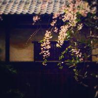 恵比寿 広尾散策