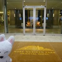 03ゆうた、クマの代わりに神戸メリケンパークオリエンタルホテルを探検する~披露宴当日編~