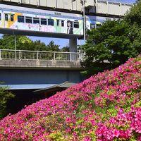 「俺ガイルラッピングモノレール」を追いかけてつつじの花咲く千葉都市モノレールに訪れてみた