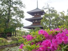 京都奈良の史跡と古刹巡り その3