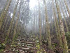 熊野三山の旅 2) 霧雨の古道を熊野本宮大社へ