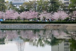 2015春、百名城巡り(38:完):4月5日(9):高松、玉藻公園、高松城、淡路島経由名古屋へ
