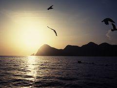 大漁! 丹後の定置網漁船にて朝日を拝む。