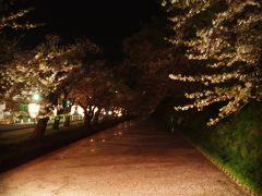 弘前城の枝垂桜に感激!