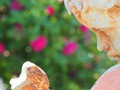 横浜イングリッシュガーデン 薔薇の賛歌  早朝プレミアム開園に行ってみました♪