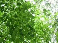 京都通い2015春 阪神間まで足を延ばして