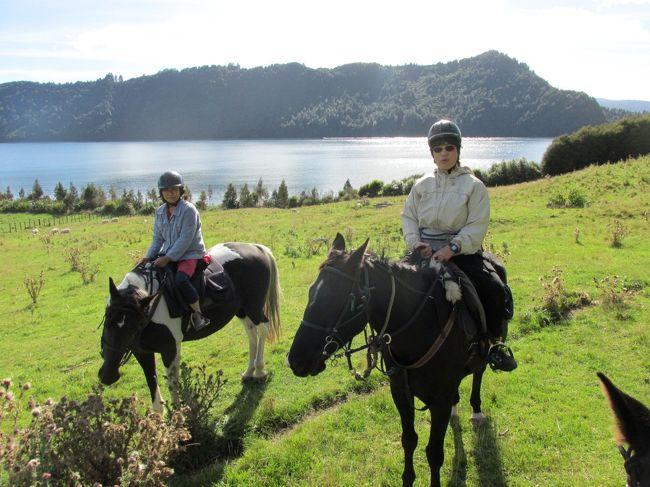 さざんか亭B&amp;B3泊のゲストFumikoさんとオカレカ湖の近くのコースで乗馬しました。<br />Fumikoさんは今回3回目のNZ、約2ヶ月のロングステイ(オークランド中心)で、ロトルアへの小旅行。中でも初体験の乗馬を一番楽しみにして来たそうです。予定していた木曜日があいにくの雨。オークランドからパックで予約されていた翌日のシープショー&ファームツアー+ランチクルーズのうち、前半を木曜日に変更して、乗馬と入れ替え。作戦が当たって、青空の下、湖や牧場の景色を満喫しながらの乗馬ができました。<br />私自身が馬術経験者なので、ゲストの希望があれば通訳&乗馬ガイド補助を兼ねて同行します。<br />レイク・オカレカの乗馬コースは、これまでに何度もゲストと同行していますが、いつもは1時間半コース(ビギナー〜上級者向き)か2時間コース(上級者向き)で、1時間コースは私にとっても初コース。牧場のマネージャー、ルーシーさんは「1時間半コースの方が眺めがいいわよ」と言ってくれましたが、ランチクルーズの時間が控えているので、余裕を持って1時間コースにしました。アップダウンの変化は少ないけど、かえってこちらの方がオカレカ湖にグッと迫る近さで、とてもいいコースです。<br />最後の平坦な牧草エリアで、私だけ速足か駆け足をさせてくれたら言うこと無しでしたが……。ビギナー向けコースということで、ここで走りたいという人はないのかもしれませんね。<br /><br />乗馬の後、ブルーレイク&グリーン・レイクの神秘スポット、レッドウッド・フォレスト・ウォーク(30分コース)の癒しスポットも満喫できました。そちらはこのアルバムのpart 2で紹介します。<br /><br />KIWI-RACCO B&amp;B さざんか亭<br /> http://www.kiwi-racco.com