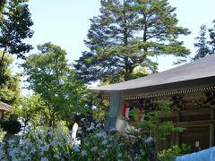 【坂東札所巡礼5】新緑の白山順礼峠道を歩いて札所六番長谷寺を目指した後は七不思議の札所八番星谷寺へ